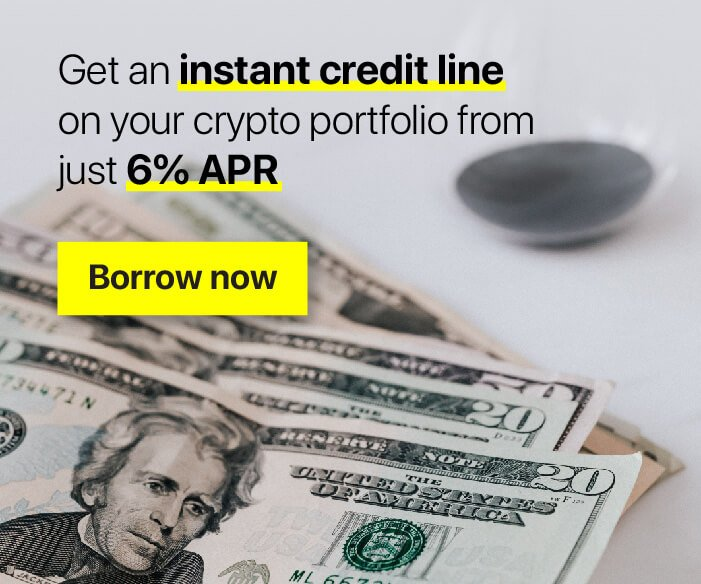 Get an instant creditline on your portfolio