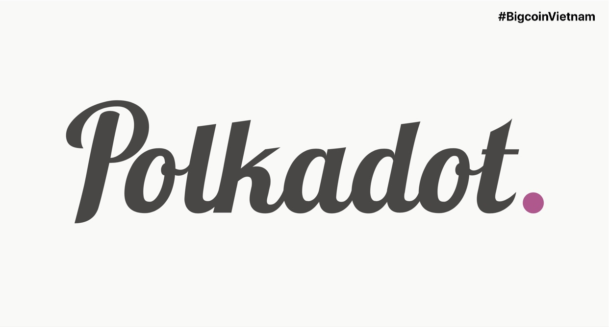 Polkadot coin (DOT): Everything you need to know