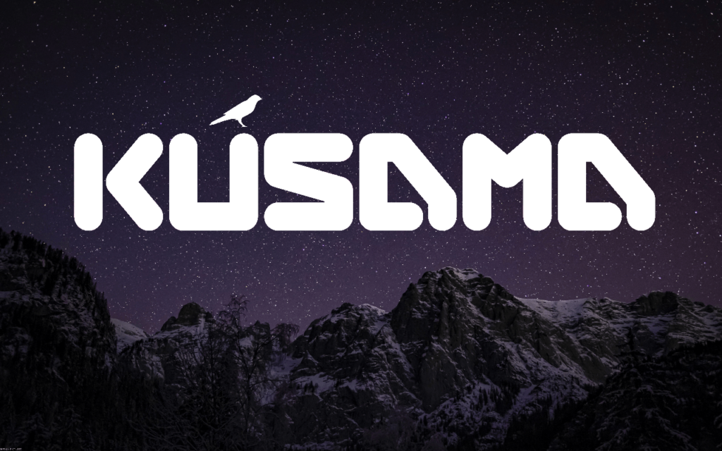 Can kusama coin scale the heights reached by ethereum?